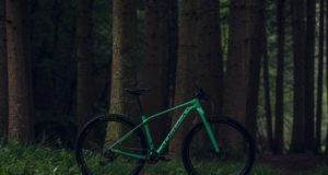 Mountain Bike Orbea Alma